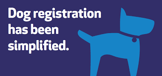 dog registration has been simplified